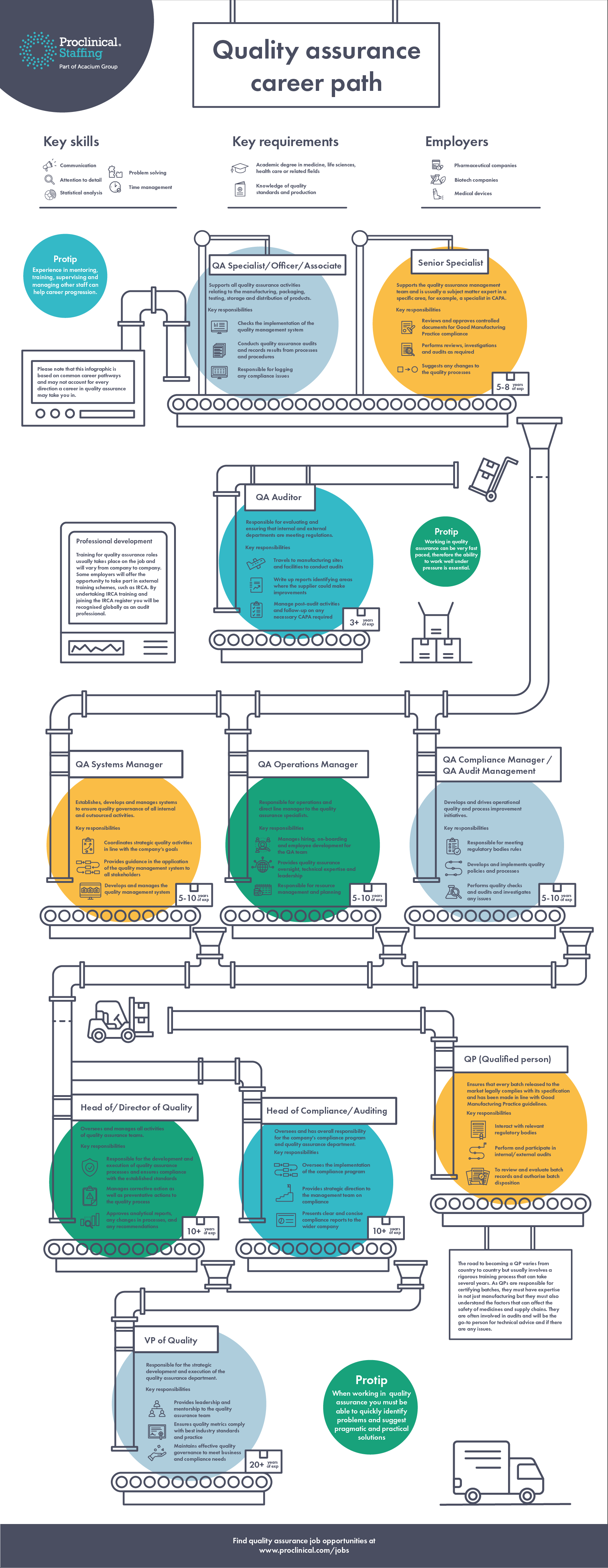 Infographic: Quality assurance career path
